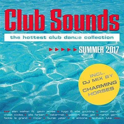 Club Sounds Summer 2017 (2017)