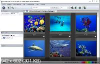 Photo Mechanic 5.0.18729 Portable Ml/Rus/2017
