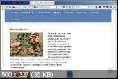 FireFox Quantum 60.3.0 ESR Portable + Расширения by PortableApps